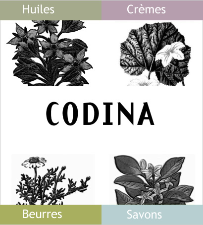 Codina-cosmetique-naturelle